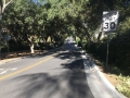 Adam Street (3).jpg